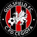 guilsfield-f-c