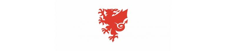 faw-dragon-logo