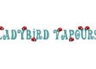 Ladybird-Vapours-300x200
